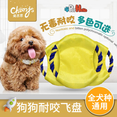 Teddy bears bear side breeds golden retriever training dog frisbee