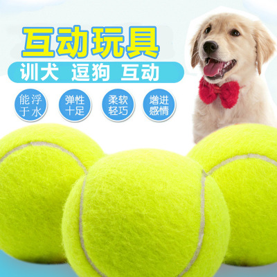 Dog toy pet toy dog toy tennis ball hollow leather toy rubber toy tennis ball