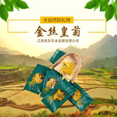 昊辰农业金丝皇菊100朵泡袋装独立包装厂家直销实力厂家