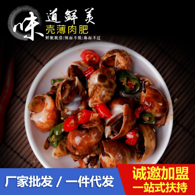 Manufacturers direct marketing secret system spicy conch ready to eat spicy conch 370g canned delicious seafood support OEM