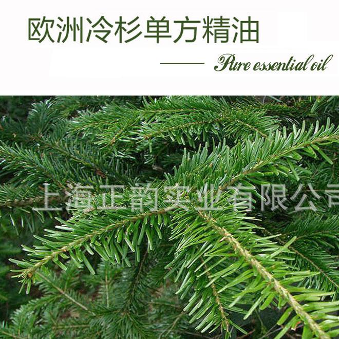 欧洲冷杉单方精油Silver fir进口纯植物精油500ml身体精油oem