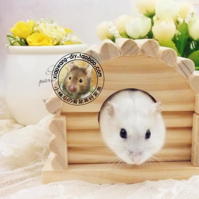 Hamster toy hamster bedroom wooden sleeping nest split cabin RJ114 hamster wooden house toy wholesale
