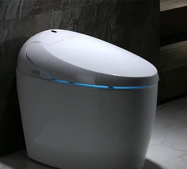 厂家批发一体智能坐便器 智能遥控即热出水全自动马桶正品承接OEM