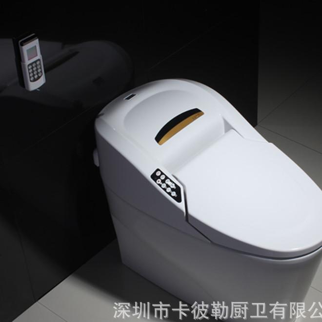 德国进口智能马桶高品质全自动遥控感应一体式智能坐便器