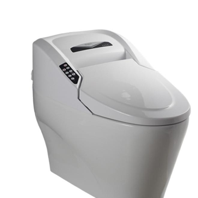 OUNA全自动智能马桶一体智能坐便器遥控感应智能卫浴老人