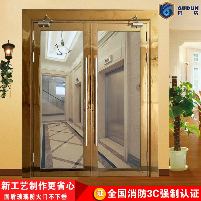 Titanium gold glass fire door factory solid shield glass titanium gold fire door manufacturers factory factory price concessions