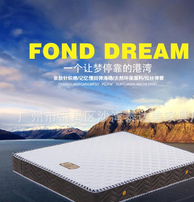 定制 经济型椰棕弹簧床垫1.2 1.5 1.8米零甲醛拆洗席梦思床垫