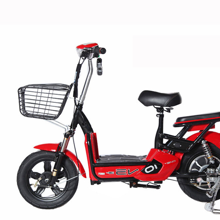 厂家直营销售电动自行车新款48V骏马尚丁成人电动车